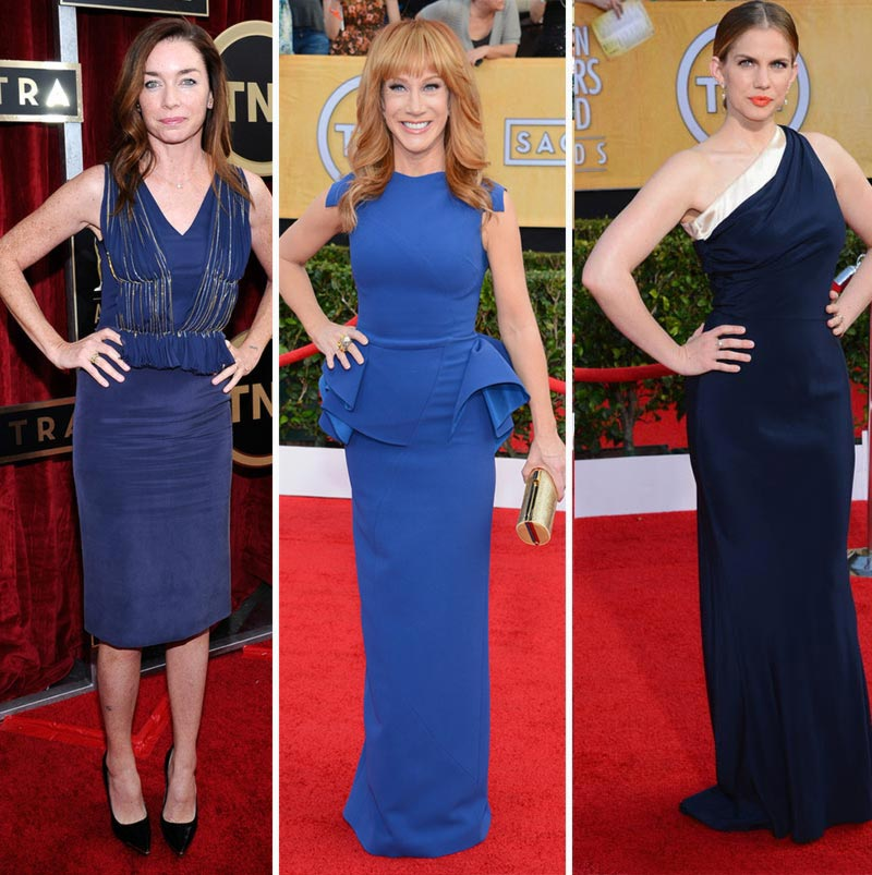 2014 SAG Awards blue dresses Julianne Nichols Kathy Griffin Anna Chlumsky