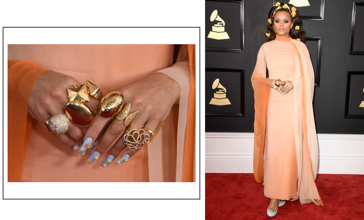 2017 grammy awards red carpet andra day