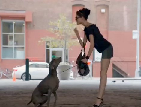 Coco Rocha Running After A Dog For Longchamp's Spring Summer Ad Campaign