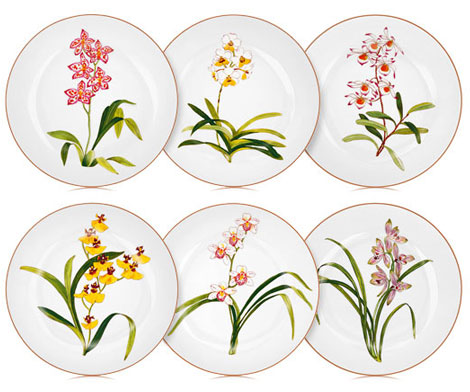 Hermes Jardin des Orchidees Plates