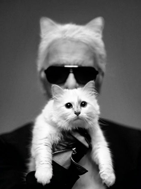 Karl Lagerfeld with his cat in Harper s Bazaar