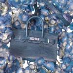 Mini Hermes Birkin blue