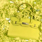 Mini Hermes Birkin yellow