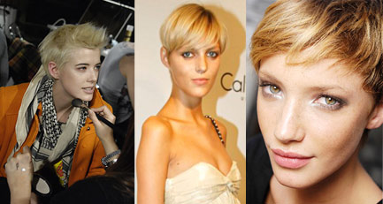 Agyness Deyn, Anja Rubik and Milagros Schmoll Short Haircut