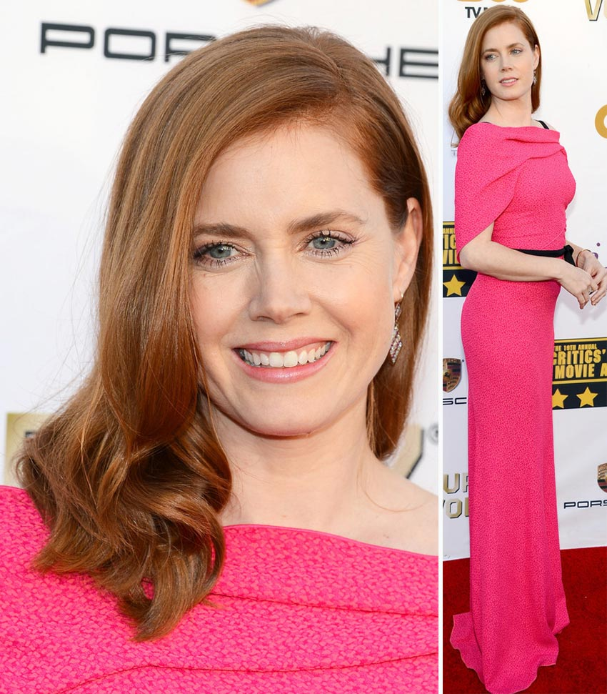 Amy Adams hair pink Roland Mouret dress Critics Choice Awards