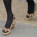 Animal Print Still In For 2009 Dixit Kate Moss!