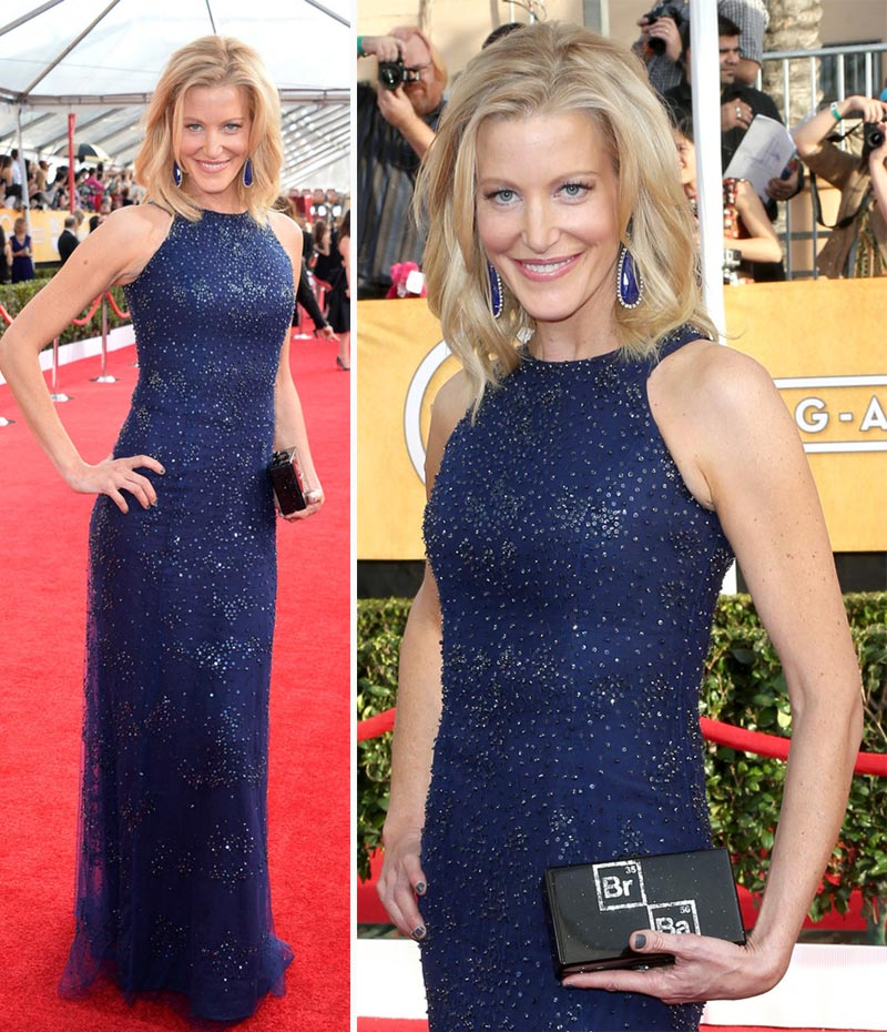 Anna Gunn 2014 SAG Awards Red Carpet dress