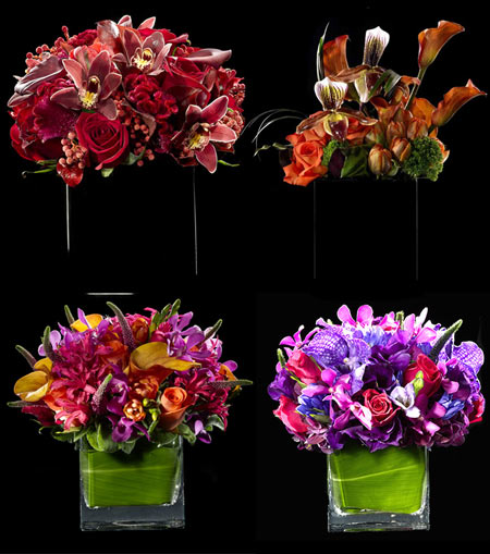 Bloom Flowers Bouquets