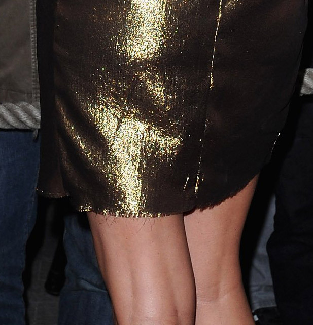 Charlize Theron Lanvin dress Paris premiere 4