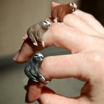 Dare To Wear The Sloth Rings?