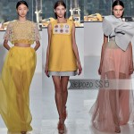 Delpozo Spring Summer 2015 collection