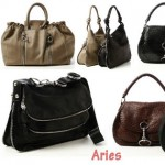 Donna Karan Modern Astrology Bags - Aries