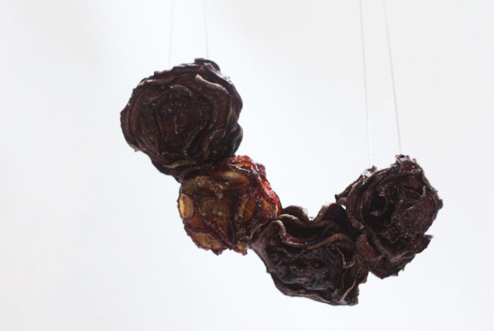 dried fruits necklace 1