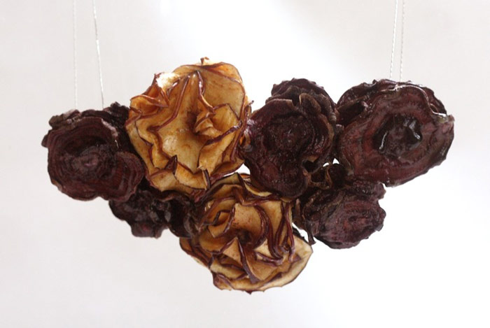 dried fruits necklace 4