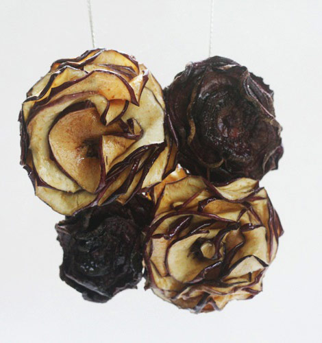 dried fruits necklace apple