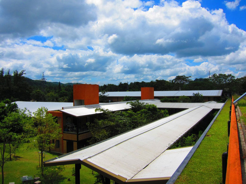 Eco Factory MAS Sri Lanka green roofs