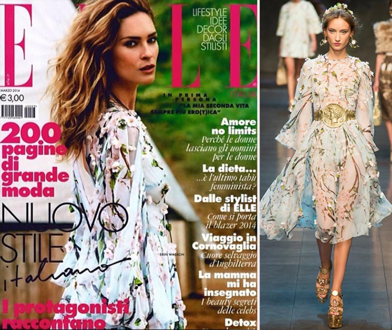Erin Wasson Elle Italia cover Dolce Gabbana dress SS14