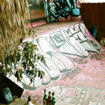 Erin Wasson Half pipe backyard