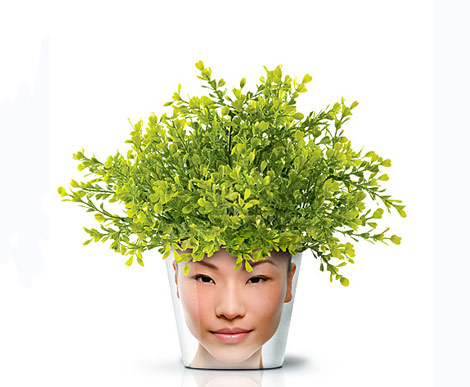face print flower pot buxus