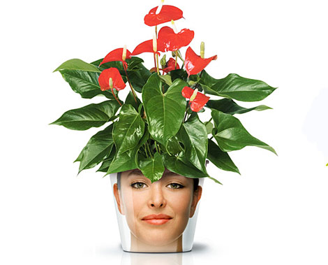 face print flower pot red