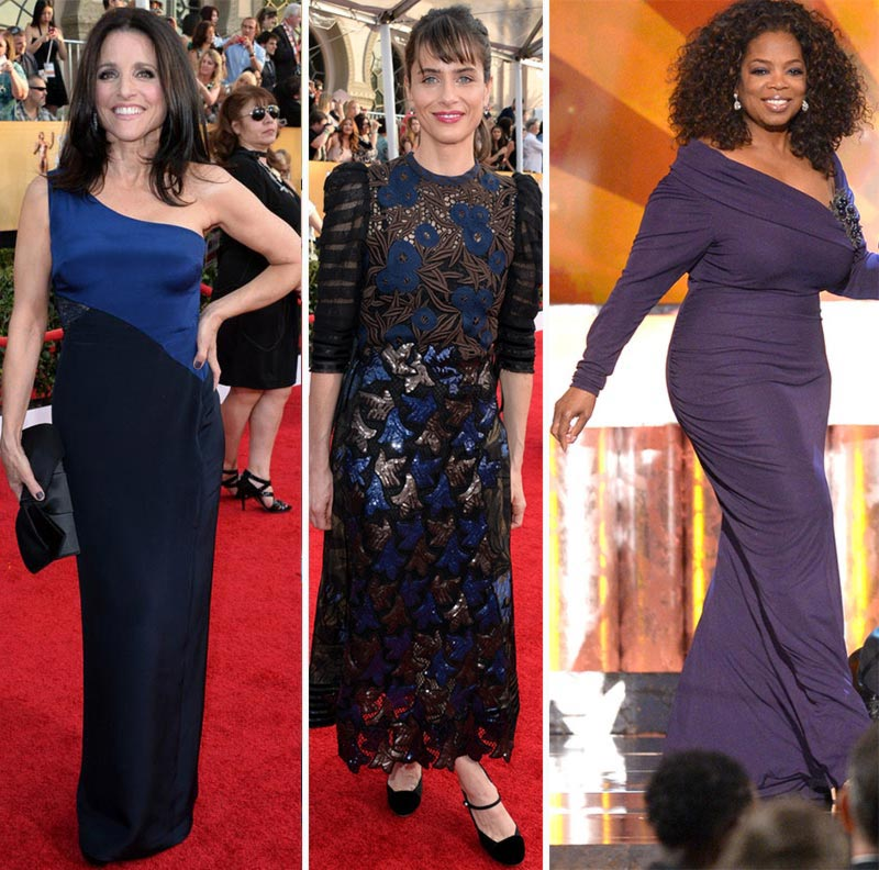 Julia Louis Drefus Amanda Peet Oprah dresses 2014 SAG Awards