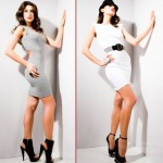 Kardashians Bebe Collection dresses