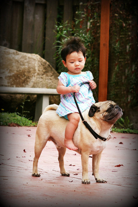 little girl riding her dog
