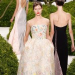 lovely flowers embroidered dress Dior Couture Spring 2013 collection