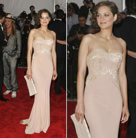 Marion Cotillard In Dior Dress At Met Gala 2009