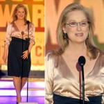 Meryl Streep Best Actress Critics Choice Awards 2010