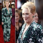 Meryl Streep dress 2010 SAG Awards