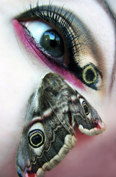 moth eyes makeup