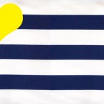navy stripes yellow colors combo
