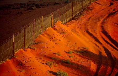 Orange sunlight dingo fence Australia Medford Taylor