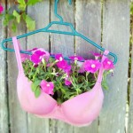 original planter pink bra