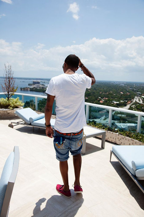 Pharell Williams home terrace view
