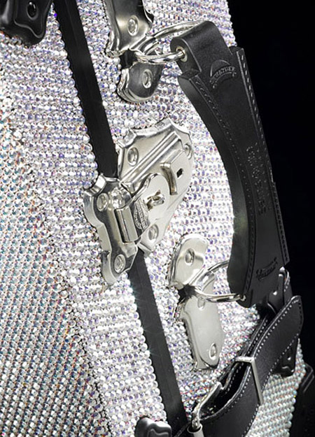 Samsonite Black Label Trunk with Swarovski crystals detail