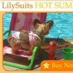 Swim Suits Collection at Little Lily