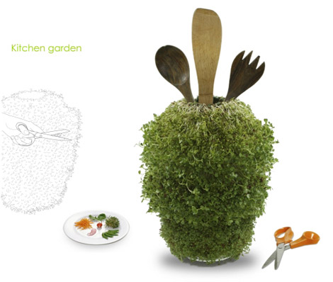 Could You Use A Living Moss Carpet? Or A Fragrant Swing?