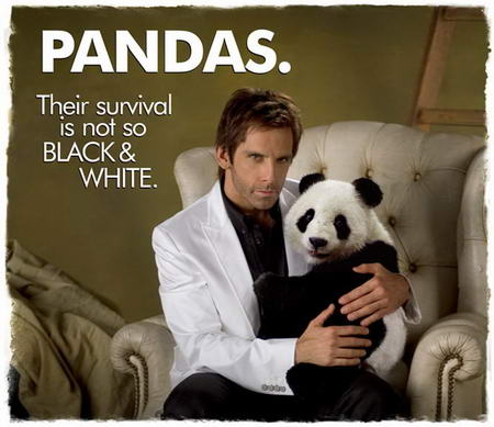 Tugg Speedman Panda Relocation Foundation Ben Stiller