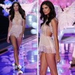 Victoria s Secret 2014 Fashion Show wings