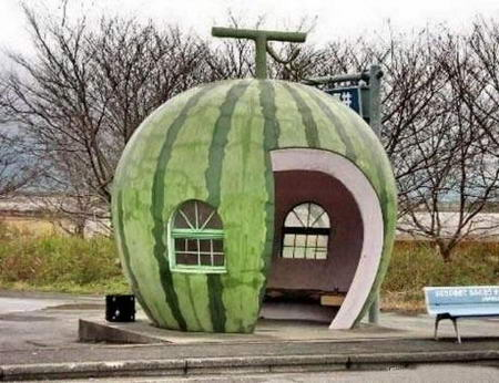 Watermelon Creative Bus Stop