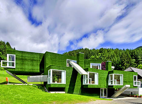 weird architecture Home Style: Synthetic Grass Covers Entire House