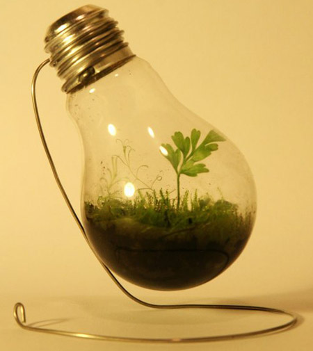 Easy Like A World In A Light Bulb!